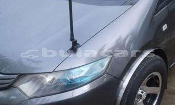 Buy Used Honda Insight Grey Car in Nadi in Western