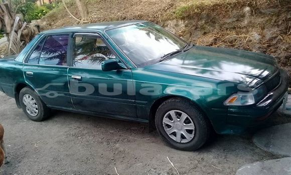 Buy Imported Toyota Corolla Green Car in Suva in Central