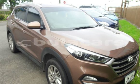Buy Imported Hyundai Tucson Brown Car in Suva in Central
