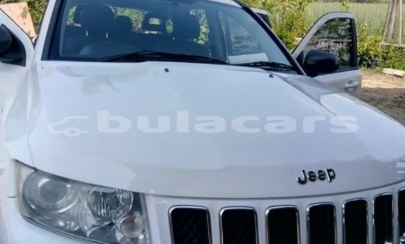 Buy Used Jeep Compass White Car in Nadi in Western