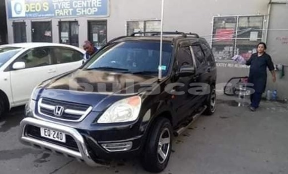 Buy Used Honda CR-V Black Car in Lautoka in Western