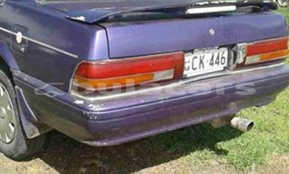 Medium with watermark post id 9758 emb7d