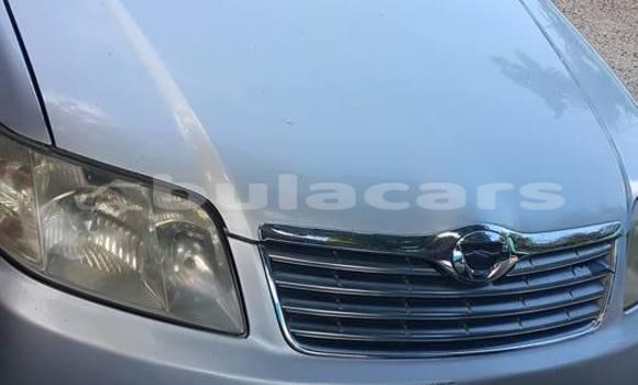 Buy Used Toyota Corolla Silver Car in Suva in Central