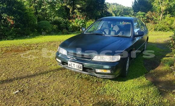 Buy Used Honda Accord Other Car in Suva in Central